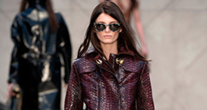BURBERRY – THE «IT» COLLECTION