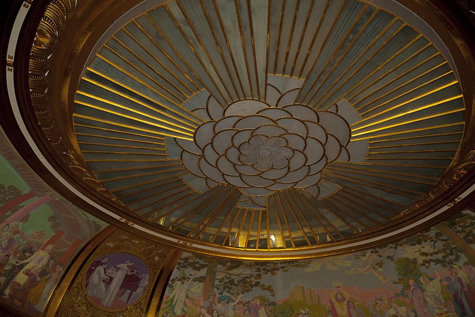 camelia ceiling