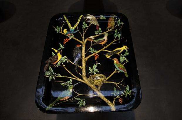 tray bird